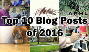 APHL's top 10 blog posts of 2016 | www.APHLblog.org