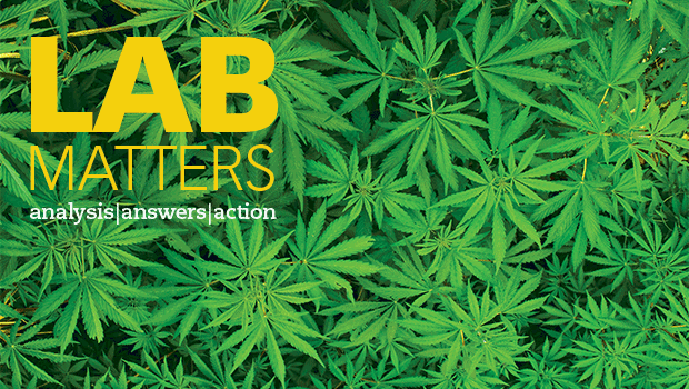 New Lab Matters: Cannabis testing and public health laboratories
