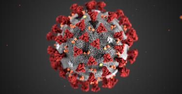 Illustration of coronavirus molecule