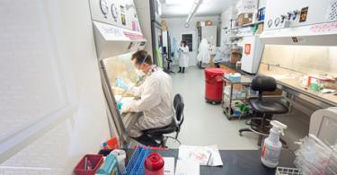 Erik Riesdorf of Wisconsin prepares specimens for testing in the laboratory