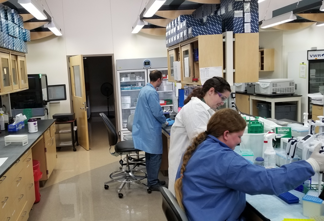 Three scientists work on wastewater testing in the Wyoming Public Health Laboratory.